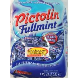 PICTOLIN FULLMINT 1 KL